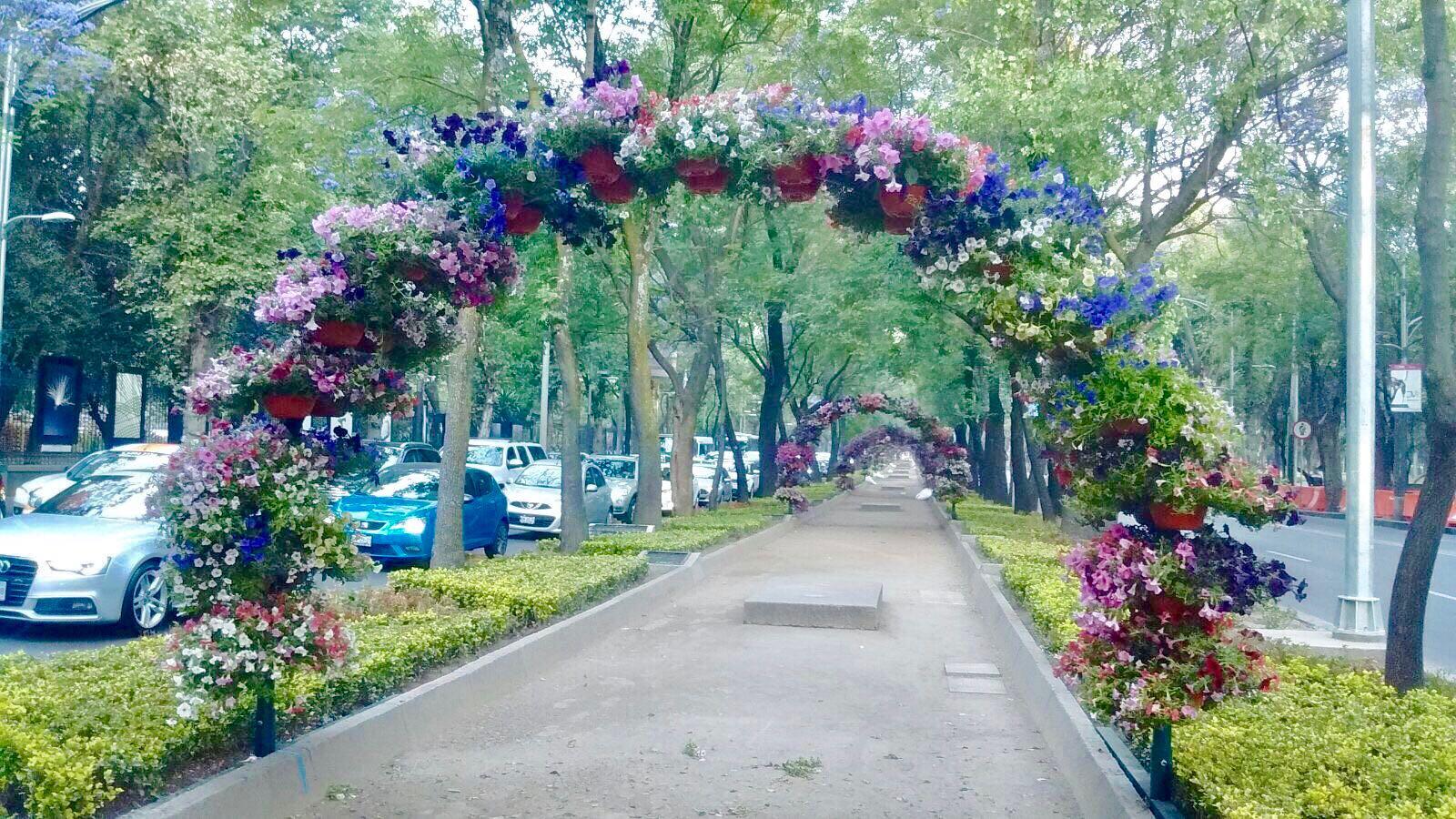 59012ab4a2027225938695 the signature co wedding - Arcos de jardin ...